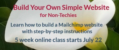 build your own website July class