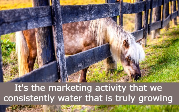 Are you in search of a marketing silver bullet?